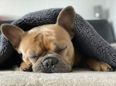 夜になると不安で眠れない。原因を明らかにして今すぐ熟睡する方法